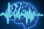 L'horloge biologique cérébrale stimule les signaux de soif avant la période de sommeil
