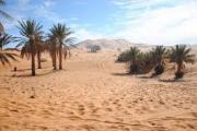 Comment le Sahara vert a disparu